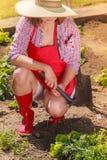 Mulher com a ferramenta de jardinagem que trabalha no jardim Fotos de Stock