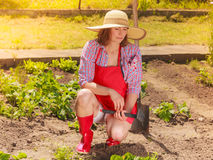 Mulher com a ferramenta de jardinagem que trabalha no jardim Imagens de Stock Royalty Free