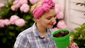 Mulher com flores Pulverizadores da mulher e flores da terra Florescência da mola Flores da estufa jardineiro feliz da mulher com filme