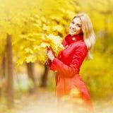 Mulher com grupo das folhas de bordo fotos de stock royalty free