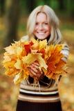 Mulher com grupo das folhas de outono imagem de stock