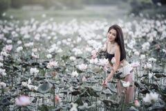 Mulher com lótus Imagem de Stock Royalty Free