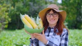 Mulher com milho em uma cesta, em uma exploração agrícola ou em um jardim vegetal O conceito de colher ou de vender vegetais filme