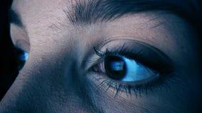 Mulher com o apego do Internet que surfa a rede social na insônia da noite imagens de stock