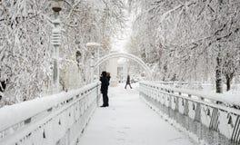 Mulher com o bebê na ponte no inverno no parque fotografia de stock royalty free