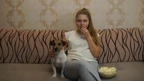 Mulher com o cão que olha a tevê video estoque