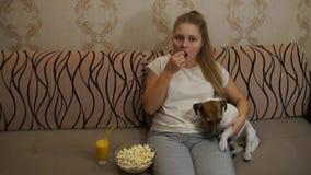 Mulher com o cão que olha a tevê vídeos de arquivo