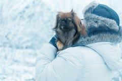 Mulher com o pequinês do cão no parque do inverno imagem de stock