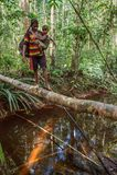 Mulher com o rio na ponte do tronco de árvore, tribo do cruzamento da criança de povos de Korowai Imagens de Stock
