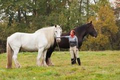 Mulher com os dois cavalos de condado foto de stock royalty free