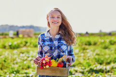 Mulher com os vegetais orgânicos frescos da exploração agrícola Fotos de Stock Royalty Free