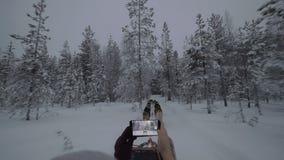 Mulher com a pilha que faz o vídeo do curso dogsled em madeiras do inverno filme