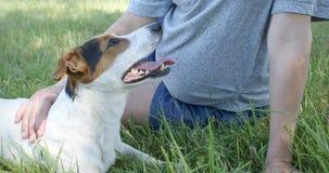 Mulher com seu cão na grama filme