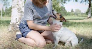 Mulher com seu cão na grama vídeos de arquivo
