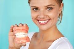Mulher com sorriso bonito, dentes saudáveis que guardam o modelo dental imagem de stock royalty free