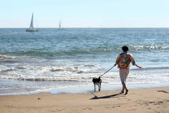 Mulher com um cão Fotografia de Stock