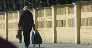 A mulher com um saco de compras anda ao longo do passeio à vista traseira vídeos de arquivo