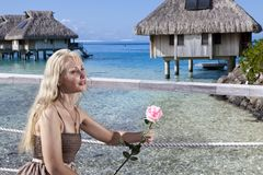 A mulher com uma rosa em uma mão olha o mar e as casas sobre a água Tahit Fotos de Stock