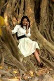Mulher consideravelmente asiática no telefone na árvore velha da raiz. foto de stock