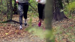 mulher 2 corrida na floresta vídeos de arquivo