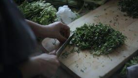 A mulher corta verdes em um quadro, close-up vídeos de arquivo