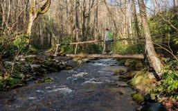 A mulher cruza a ponte de log na mola adiantada Foto de Stock