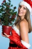 Mulher da árvore de Natal fotos de stock royalty free