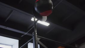 Mulher da aptidão que faz o exercício da bola da parede no gym video estoque
