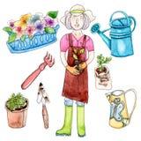 Mulher da aquarela, plântula e ferramentas de jardim Imagem de Stock
