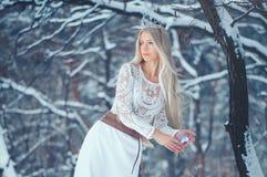 Mulher da beleza do inverno Menina bonita do modelo de forma com penteado e composição da neve na composição e no tratamento de m fotos de stock royalty free