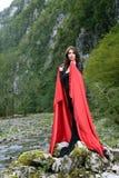 Mulher da beleza no vestido Fotos de Stock Royalty Free