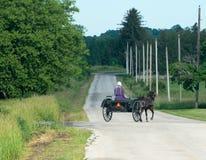 Mulher da exploração agrícola de Amish, cavalo, carrinho foto de stock royalty free