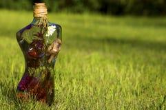 Mulher da flor no gramado verde Imagens de Stock