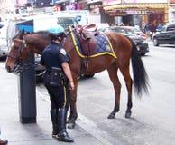 Mulher da polícia com o cavalo em NYC Fotos de Stock