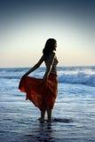 Mulher da praia imagem de stock
