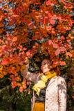 Mulher das pessoas de 55 anos no parque do outono com folhas coloridas Imagem de Stock Royalty Free