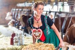 Mulher de Baviera que conduz o carro de mão no celeiro de vaca Fotografia de Stock Royalty Free