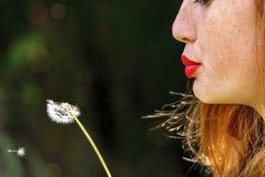 Mulher de cabelo vermelha nova que funde um dente-de-leão fotos de stock royalty free