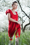 Mulher de Glamor no vestido vermelho Imagens de Stock Royalty Free