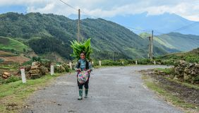 Mulher de Hmong que anda na estrada da montanha imagens de stock royalty free