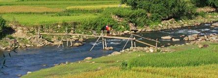 Mulher de Hmong que passa uma ponte de bambu Fotos de Stock Royalty Free