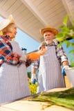 Mulher de irradiação aposentada que sente feliz ao guardar pouca planta da casa fotografia de stock