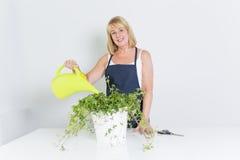Mulher de jardinagem com planta Isolado no fundo branco Imagem de Stock
