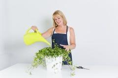 Mulher de jardinagem com planta Isolado no fundo branco Fotos de Stock Royalty Free