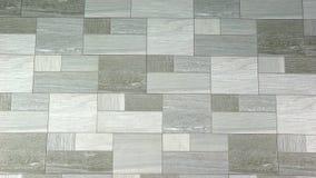 Mulher de negócio bonita que dá a apresentação video estoque