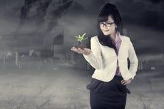 Mulher de negócio bonita que guarda uma planta Foto de Stock Royalty Free