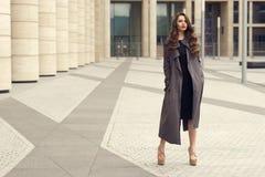 Mulher de negócio consideravelmente bonita no vestido preto elegante imagem de stock royalty free