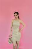 Mulher de negócio da forma que guarda um saco Imagens de Stock Royalty Free