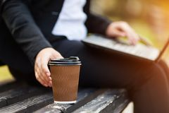 Mulher de negócio que senta-se no parque em um banco, trabalhando com um portátil imagem de stock royalty free
