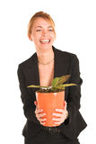Mulher de negócios #242 Fotos de Stock